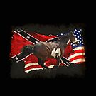 Pinto Horse running with Rebel Flag and US Flag by Val  Brackenridge