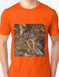 Snail's Pace on the Rainforest Floor - Otway Ranges Unisex T-Shirt