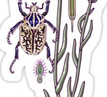 cornflower dream Sticker