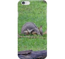 Rock Wallaby iPhone Case/Skin