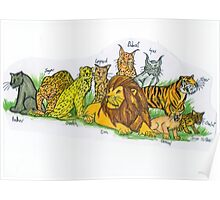Find Your Pride! - Feline Family Poster