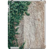 Transition Takes Time iPad Case/Skin