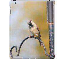 House sparrow on bird feeder iPad Case/Skin