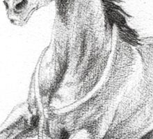 Running Horse Sticker
