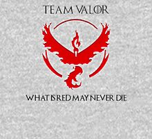 Team Valor Design - Pokemon GO Unisex T-Shirt
