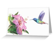 Hummingbird and Hibiscus Greeting Card