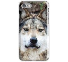 Mexican Gray Wolf iPhone Case/Skin
