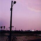 pink sky by 黃 黃