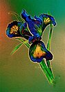 Green Silk... by © Janis Zroback
