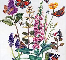 Butterflies and Buddleia by Kirsty O'Leary-Leeson