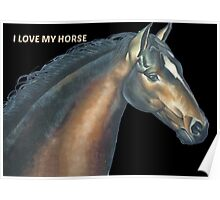 Beautiful horse head and text Poster