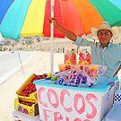 Fruit Vendor by Chet  King