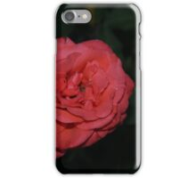 Summer Rose Photography iPhone Case/Skin