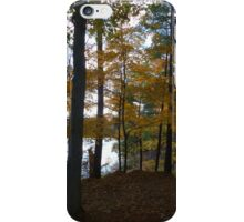 Fall in Frontenac Park,Ontario iPhone Case/Skin