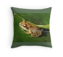Hey - who turned the lights on? Throw Pillow