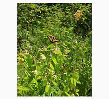 Western Tiger Swallowtail (Papilio Rutulus Lucas) Unisex T-Shirt