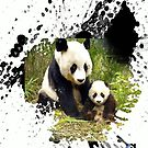 adorable pandas by arteology