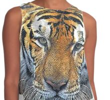 the tiger Contrast Tank