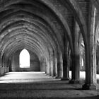 Fountains Abbey by RedGrouse