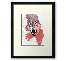 the wolf Framed Print