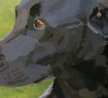 Bess - black labrador Sticker