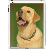 Yellow Lab. iPad Case/Skin