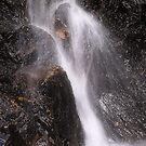 Favourite Waterfall, Birnam Hill by Tim Haynes