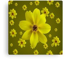 Beautiful Yellow Daisies Canvas Print