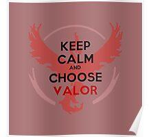 Choose Valor - Light Apparel Poster