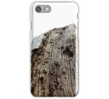 Chipped iPhone Case/Skin