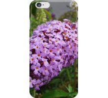 Butterfly Bush iPhone Case/Skin