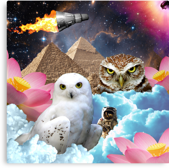 I Dream of Space Owls by dogmycat