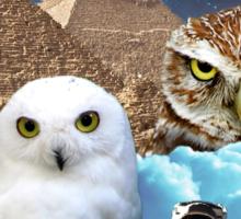 I Dream of Space Owls Sticker