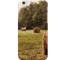 Bales Along the Tree line iPhone Case/Skin