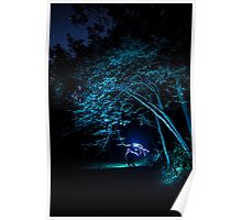 Arched tree with light paint Poster