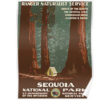 Sequoia National Park Vintage Travel Poster Poster