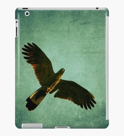 Messenger from The Universe iPad Case/Skin