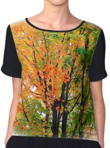 Leaves Changing Colors Chiffon Top