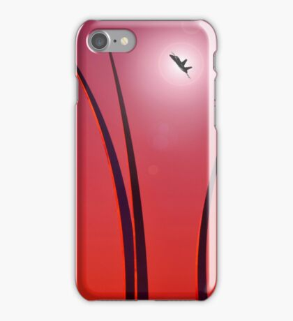 The United States Air Force Memorial - Arlington, Virginia iPhone Case/Skin