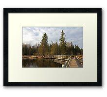 Stony Swamp Walkway HDR Framed Print