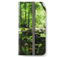 Green Serenity iPhone Wallet/Case/Skin