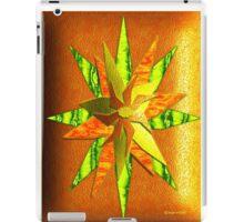 Fruit Skin Star iPad Case/Skin