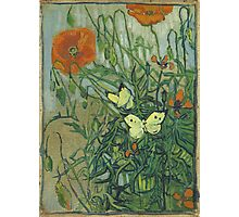 Vincent Van Gogh - Butterflies And Poppies. Still life with flowers: flowers, blossom, nature, botanical, floral flora, wonderful flower, plants, cute plant for kitchen interior, garden, vase Photographic Print