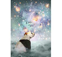 Let Your Dreams Take Flight • (Panda Dreams 2 / Color 2) Photographic Print
