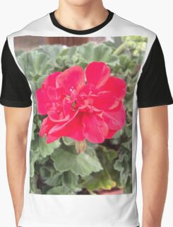 Beautiful red flower Graphic T-Shirt