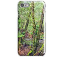 Mt Field National Park - a walk through nature iPhone Case/Skin