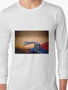Dalmatian Radiator Cap Long Sleeve T-Shirt