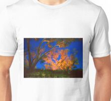 Firelight and star trails Unisex T-Shirt