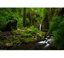Waterfall of the Pacific Northwest Photographic Print