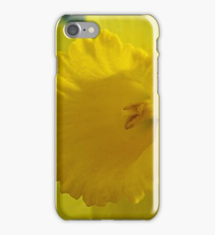 Verocity iPhone Case/Skin